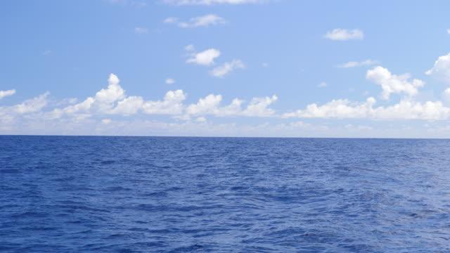 vídeos de stock e filmes b-roll de the blue ocean from a sailboat. - slow motion - explorador