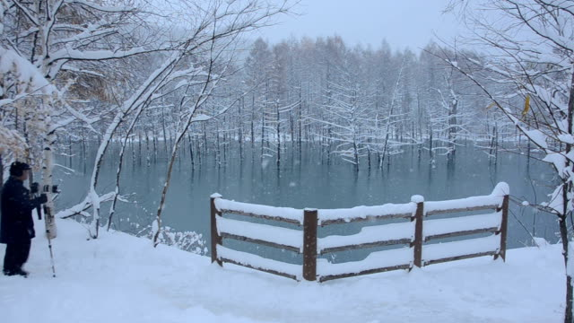 The Blue Pond a tourist spot in Biei Hokkaido is covered with a thin layer of snow on November 4 White colored deadwood reflected on the surface of...