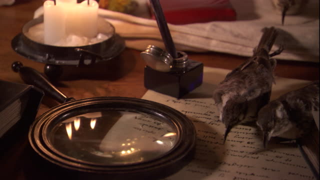 The bodies of mockingbirds litter the desk of naturalist Charles Darwin who writes in a notebook. Available in HD.
