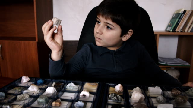 the boy looks at the stone from the collection - geology stock videos & royalty-free footage