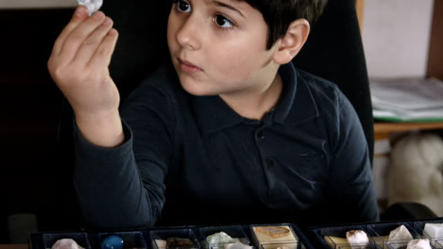the boy takes a stone from the collection - stone object stock videos and b-roll footage