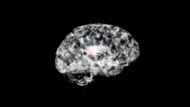 the brain of neuron system black loop - human brain stock videos & royalty-free footage