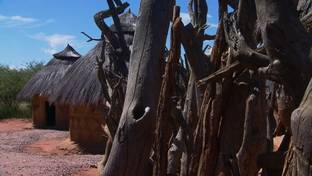 the branches of trees line an area with traditional african huts. available in hd. - strohdach stock-videos und b-roll-filmmaterial