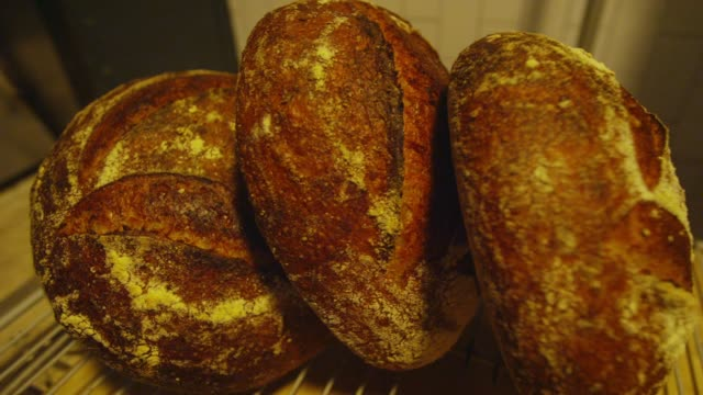the bread baked in san francisco - forno video stock e b–roll