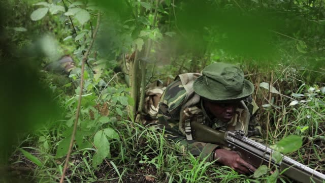 The British Army is conducting an antipoaching training programme in Kenya to enable the countrys wildlife and forestry services to better deal with...