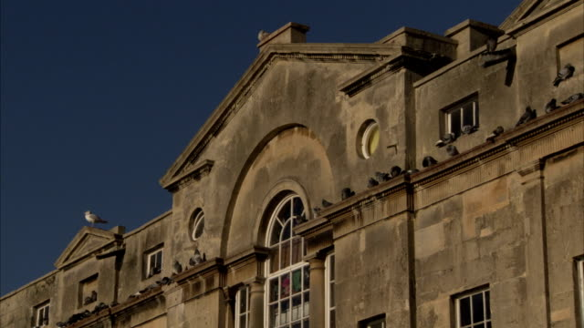 the building topping pulteney bridge features georgian architectural style. available in hd. - pulteney bridge stock videos & royalty-free footage