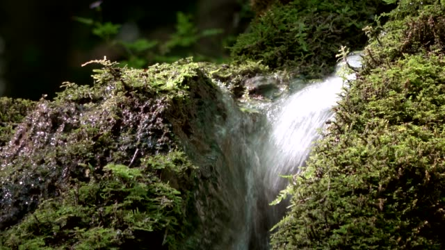 the calcareous spring water flows through a channel down the mountain - naturwunder stock-videos und b-roll-filmmaterial