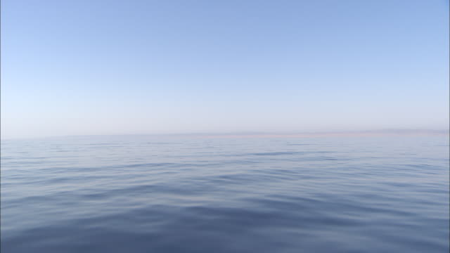 the calm red sea ripples toward a hazy horizon. - rotes meer stock-videos und b-roll-filmmaterial