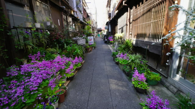 The camera captures the narrow alleyway, which is arranged by potted flowers by residents in Tsukishima Downtown Tokyo.There are Japanese traditional Nagaya style houses along the both side of alleyway.