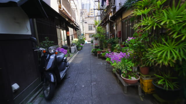 the camera captures the narrow alleyway, which is arranged by potted flowers by residents in tsukishima downtown tokyo.there are japanese traditional nagaya style houses along the both side of alleyway. - tradition stock videos & royalty-free footage