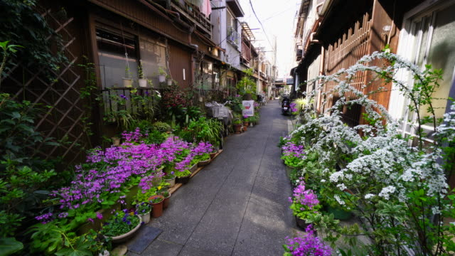 the camera captures the narrow alleyway, which is arranged by potted flowers by residents in tsukishima downtown tokyo.there are japanese traditional nagaya style houses along the both side of alleyway. - shitamachi stock videos and b-roll footage