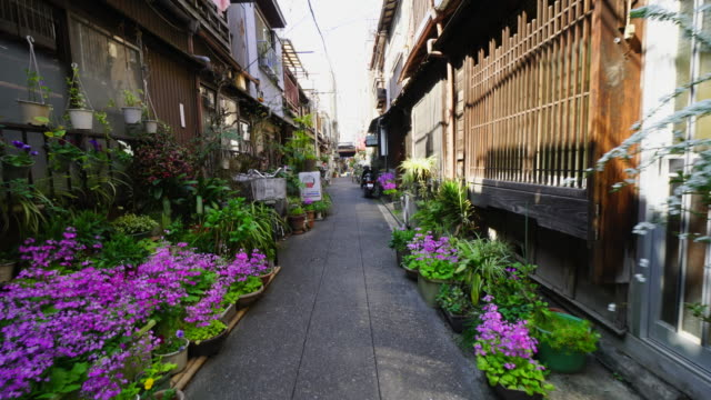 the camera captures the narrow alleyway, which is arranged by potted flowers by residents in tsukishima downtown tokyo.there are japanese traditional nagaya style houses along the both side of alleyway. - alley stock videos & royalty-free footage