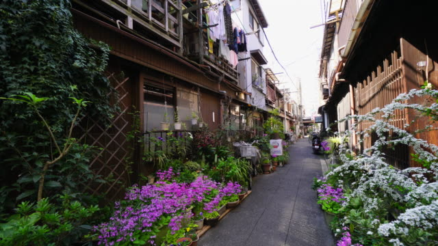 tu the camera captures the narrow alleyway, which is arranged by potted flowers by residents in tsukishima downtown tokyo.there are japanese traditional nagaya style houses along the both side of alleyway. - 路地点の映像素材/bロール