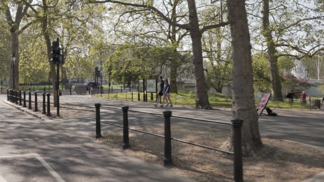 the camera sweeps around st james park to reveal buckingham palace london in glorious afternoon spring sunshine - column stock videos & royalty-free footage