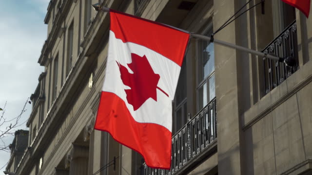 the canadian flag flutters in the breeze - bandiera del canada video stock e b–roll
