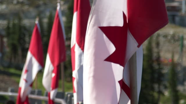 The Canadian flag waving in the breeze with mountains in the background