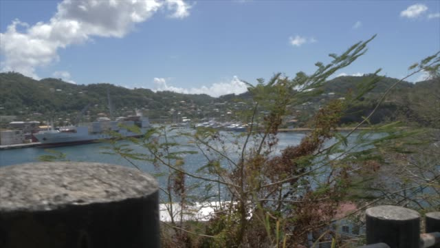 the carenage (the old harbour), st. george's, grenada, windward islands, west indies, caribbean, central america - st. george's grenada stock videos and b-roll footage