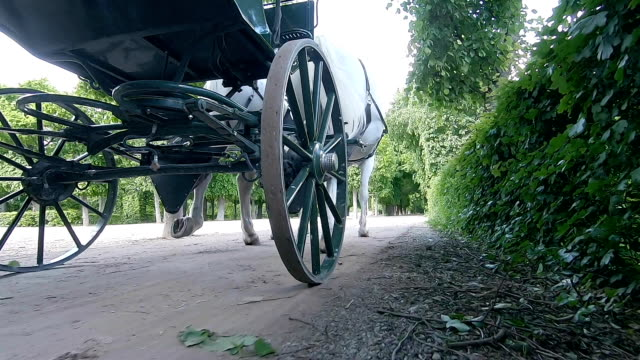 the carriage rides through the park in vienna. austria. - wheel stock videos & royalty-free footage