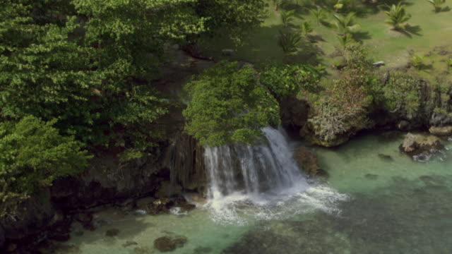 the cascading dunn's river falls flow into the caribbean sea in jamaica. - jamaica stock videos & royalty-free footage