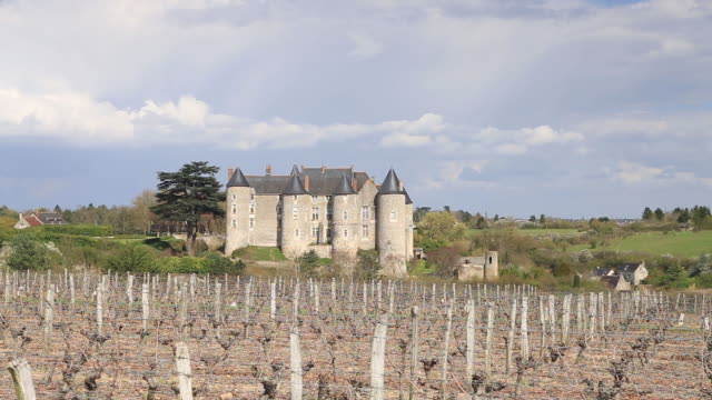 the chateau de luynes, loire valley, indre-et-loire, centre, france, europe - luynes stock videos and b-roll footage