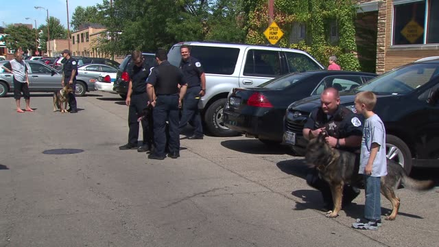 vídeos de stock, filmes e b-roll de the chicago police canine unit held a fundraiser to buy bulletproof vests for their k9 companions police officers standing with canines on september... - à prova de balas
