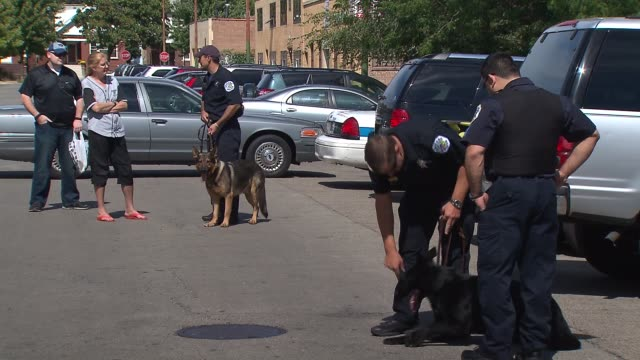 The Chicago Police Canine Unit held a fundraiser to buy bulletproof vests for their k9 companions Police Officers Standing With Canines on September...