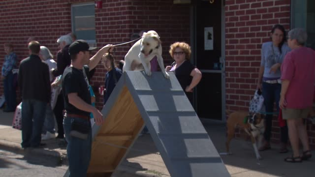 The Chicago Police Canine Unit held a fundraiser to buy bulletproof vests for their k9 companions Dog Climbs Over Obstacle Course on September 14...