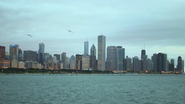 the chicago skyline at dusk (cloudy day) - kleine gruppe von tieren stock-videos und b-roll-filmmaterial