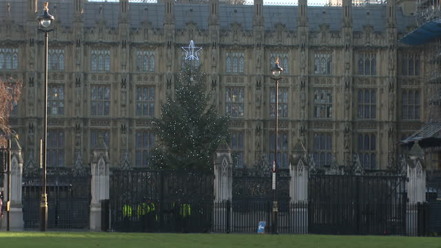 the christmas tree outside the houses of parliament - fade in video transition stock videos & royalty-free footage