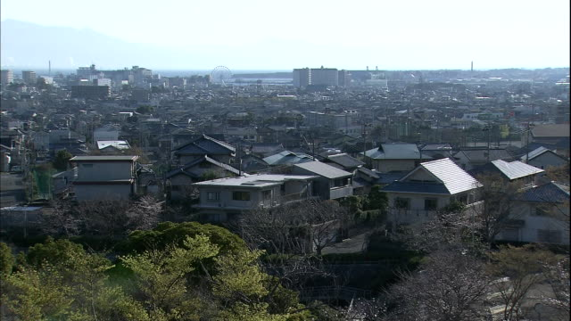 The city of Shizuoka sprawls along the base of Mt. Fuji.