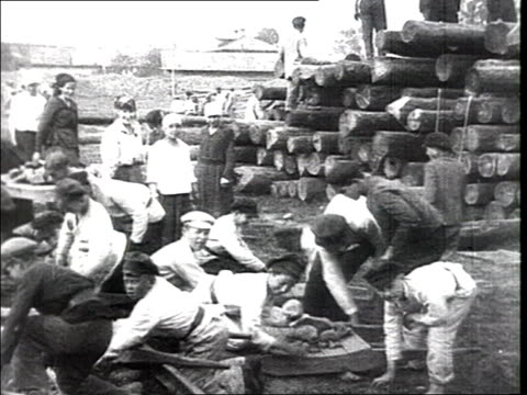 The civilian volunteers help medicine in the battle against dirtiness and starvation' Volunteer workers pile up wood logs and trunks wood unloaded...