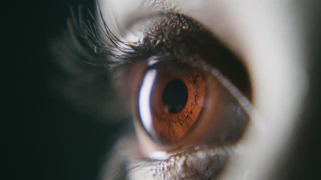 più chiara è la tua visione, più chiaro è il tuo percorso - occhi marroni video stock e b–roll
