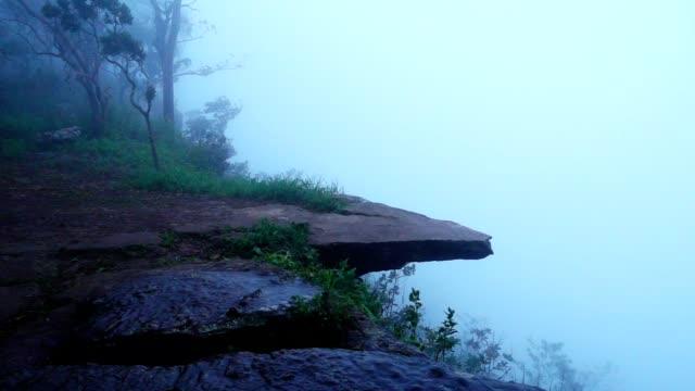 vídeos de stock e filmes b-roll de the cliff at pha hum hod, sai thong national park, chaiyaphum province, thailand - penhasco caraterísticas do território