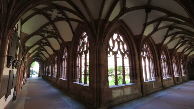 the cloisters of basel cathedral munster, city of basel, canton basel stadt, switzerland, europe - cattedrale video stock e b–roll