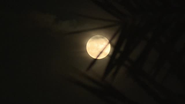 The closest supermoon to Earth in almost seven decades rose above the Egyptian capital on Monday