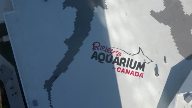 The CN tower and the Ripley's Aquarium are both famous places and tourists attractions in the Canadian city capital of the province of Ontario...