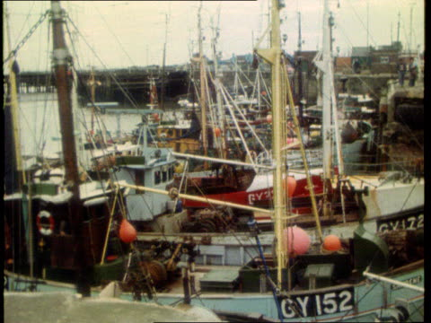 grimsby blockade airview ships in harbour / intvw geoffrey todd skipper / police on board boat - captain stock videos and b-roll footage