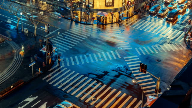 the colorful zebra - zebra crossing stock videos & royalty-free footage