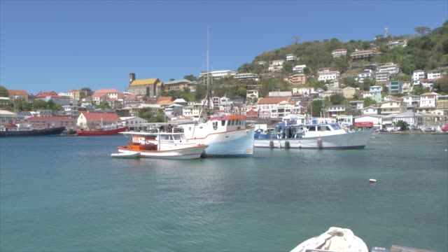 the colourful carenage, st. george's, grenada, windward islands, west indies, caribbean, central america - st. george's grenada stock videos and b-roll footage