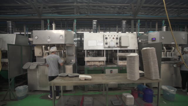 vídeos de stock e filmes b-roll de the company has grown in 10 years from making 10,000 pieces a day to 2 million, with clients in 31 other countries, including the u.s. and... - utilização única