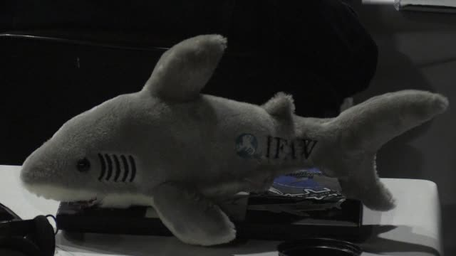 the convention on international trade in endangered species in south africa votes overwhelmingly to list 13 species of sharks and rays in its... - human large intestine stock videos & royalty-free footage