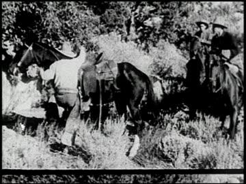 the cougar hunt - 10 of 13 - the cougar hunt bildbanksvideor och videomaterial från bakom kulisserna