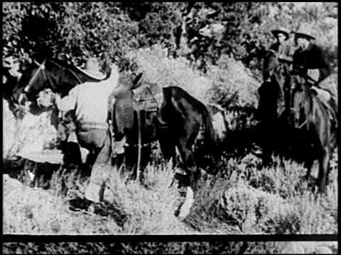 the cougar hunt - 10 of 13 - andere clips dieser aufnahmen anzeigen 2268 stock-videos und b-roll-filmmaterial
