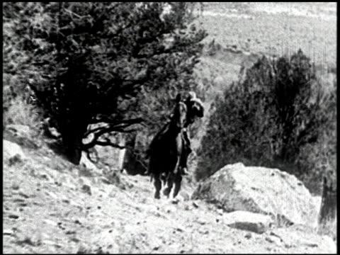 the cougar hunt - 11 of 13 - andere clips dieser aufnahmen anzeigen 2268 stock-videos und b-roll-filmmaterial