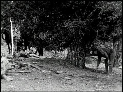 the cougar hunt - 6 of 13 - andere clips dieser aufnahmen anzeigen 2268 stock-videos und b-roll-filmmaterial