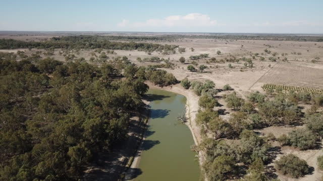 the darling river - river stock videos & royalty-free footage