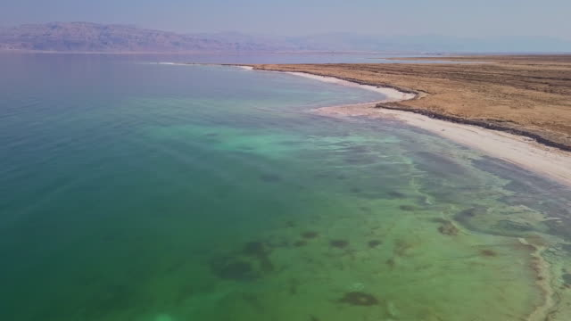 the dead sea - hovering stock videos & royalty-free footage