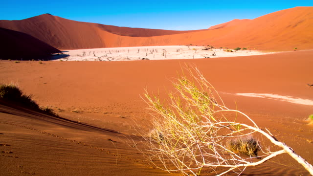 dl ws the dead vlei - natural landmark stock videos & royalty-free footage