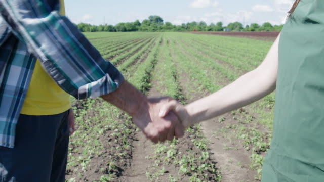 the deal is on. two farmers shaking hands on an agricultural field background. getting to an agreement that is mutually beneficial. business casual greeting handshake. - shaking stock videos & royalty-free footage
