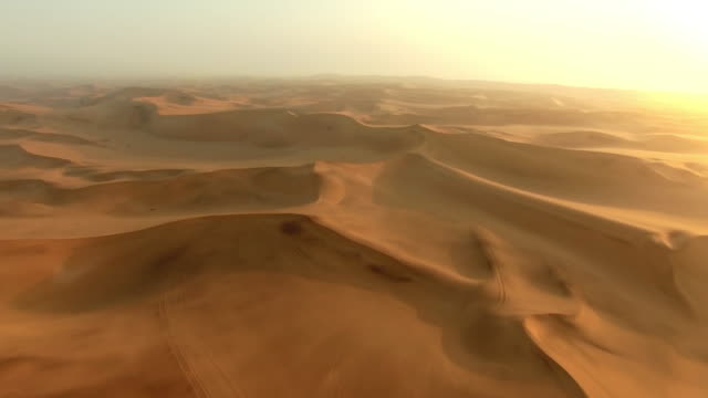 the desert is desolate - isolamento video stock e b–roll